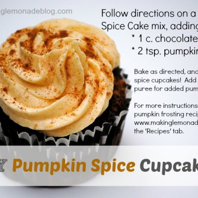 Easy Chocolate Chip Cupcakes with Pumpkin Spice