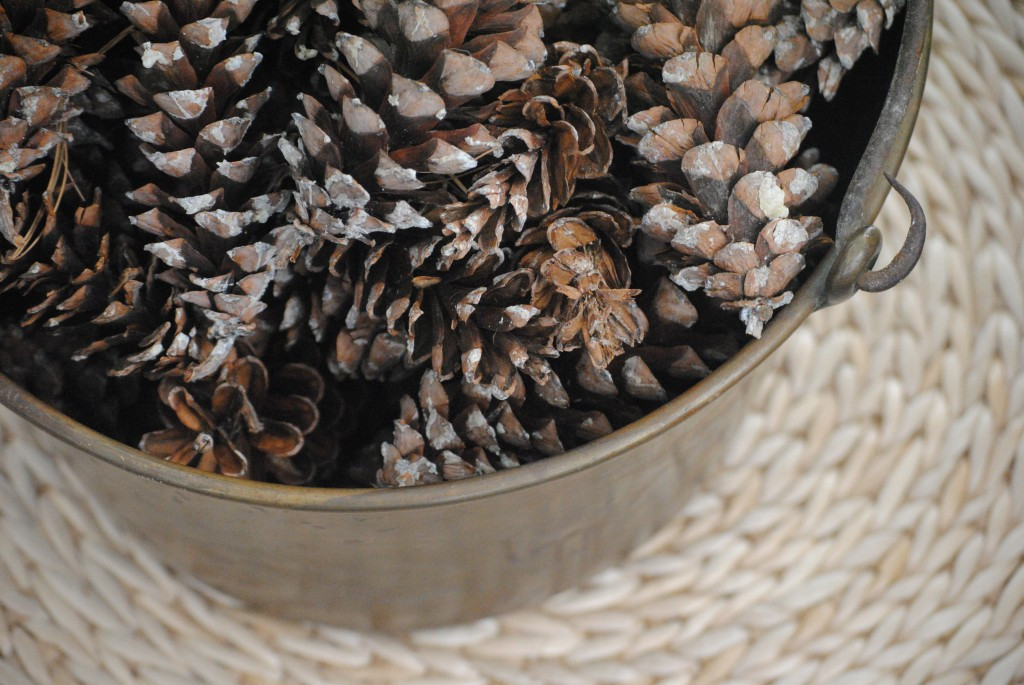 simple DIY glittered pinecones holiday decor (pinecone crafts and ideas)
