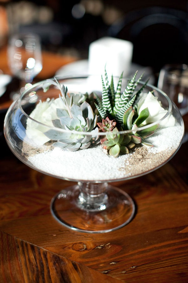 5 Beautiful Ways To Use Succulents Making Lemonade