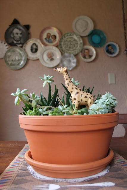 Make it fun- add toys to your succulent gardens