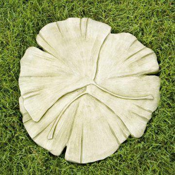 Ginkgo_stepping_stone