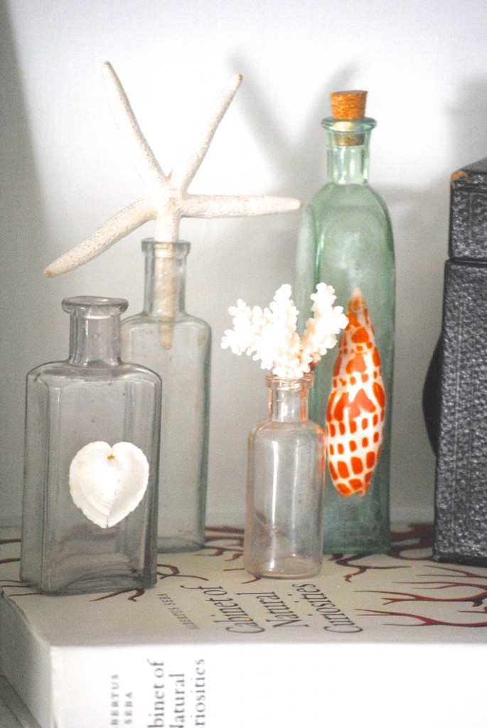 Diy Shell Bottles 15 Minute Decorating Day 6