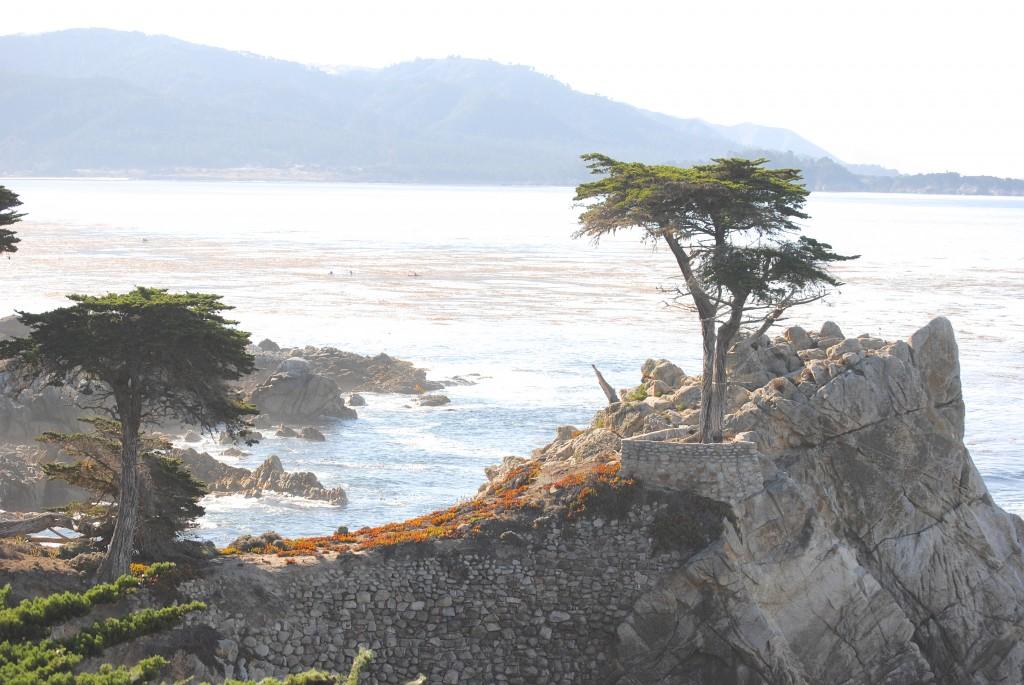 Coastal Beach Decor Idea (Monterey California)