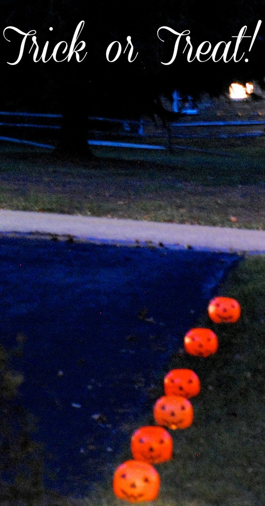 DIY Outdoor pumpkin lights