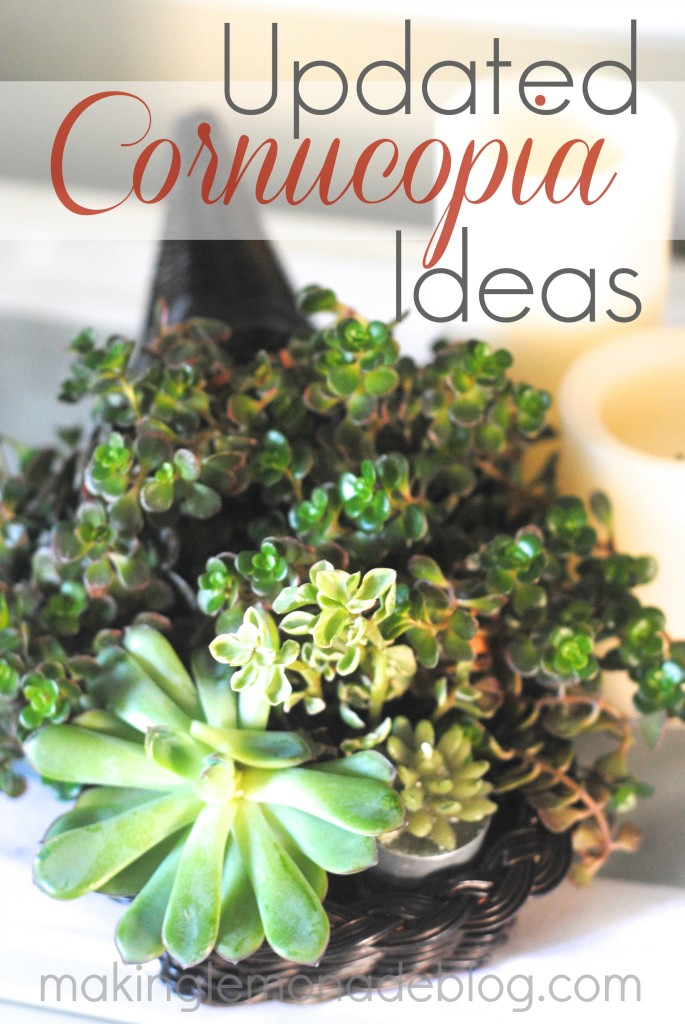 Updated Cornucopia Ideas: succulents and burlap wrapped cornucopias