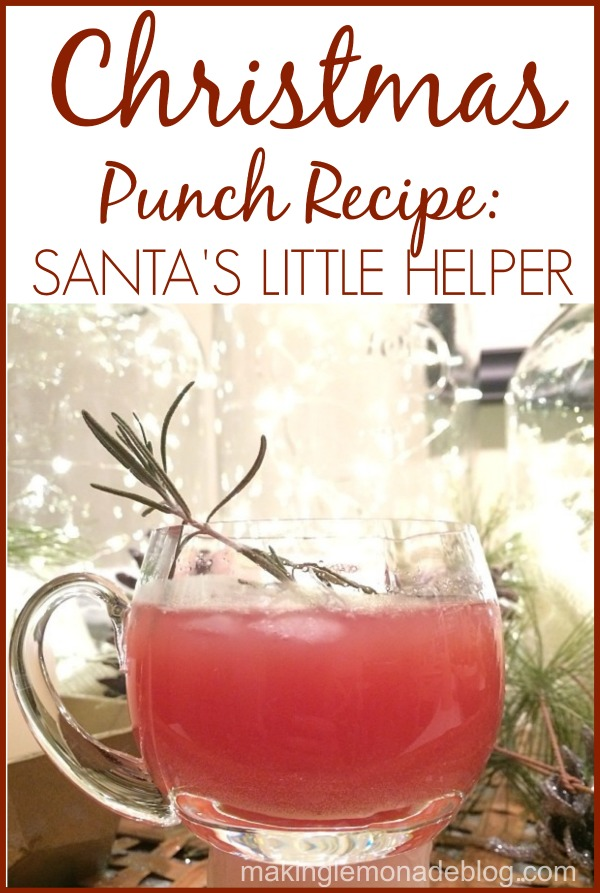 Christmas Punch Recipe: Homemade Holiday Inspiration