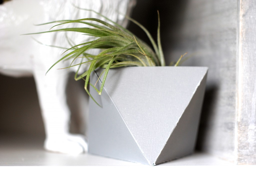 Adorable Geometric Plant Pods/ Planters-- made from paper! Get the pattern and tutorial at www.makinglemonadeblog.com #crafts #paper #planter