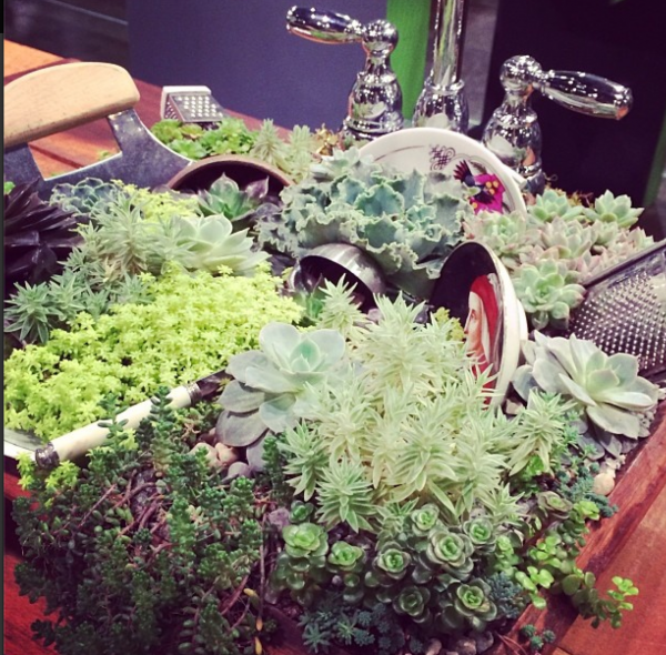 Garden Inspiration from the Philadelphia Flower Show! #gardening #Philly via www.makinglemonadeblog.com