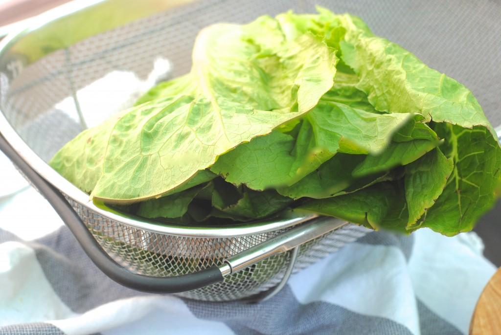 BEST summer salad recipes#summer #salads #healthyrecipes via www.makinglemonadeblog.com