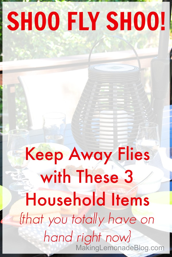 How to Keep Flies Away {with 3 things you have at home