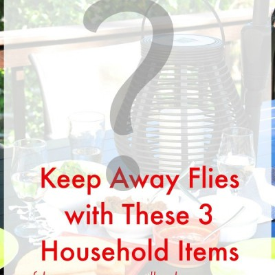 How to Keep Flies Away {with 3 things you have at home!)