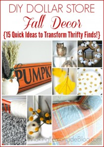 15 ways to transform thrifty finds into DIY fall decor... that doesn't look like it came from The Dollar Store (but it did, shhhhh!)