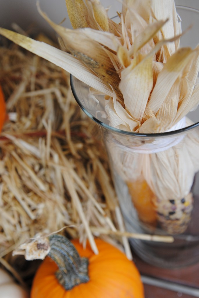 Fall Outdoor Decorating Ideas on the cheap!
