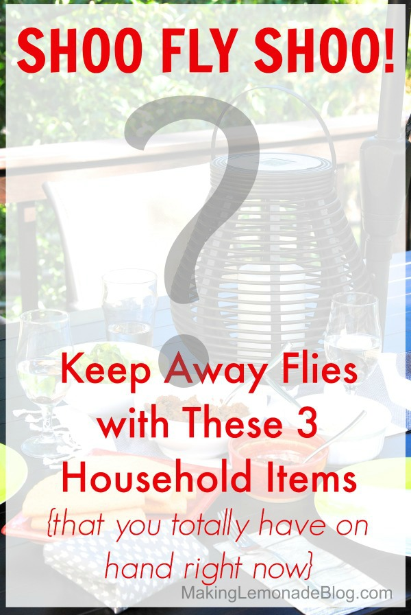 Top Posts of 2014: Shhhh, this trick will make you the hit of the outdoor party! How to Repel Flies with 3 Household Items
