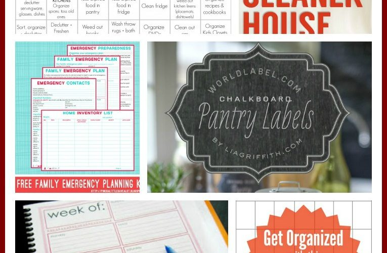 23 Free Printables to Organize Everything
