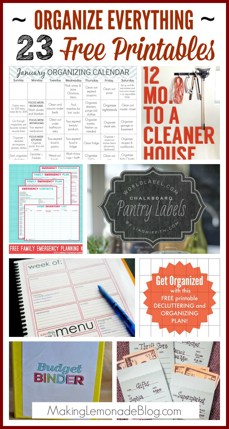picture relating to Free Printable Home Organization Worksheets referred to as 23 No cost Printables in the direction of Arrange Every little thing Manufacturing Lemonade
