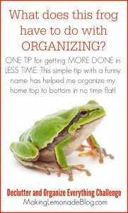 The one tip (with a funny name) that will help you organize MORE in LESS time!