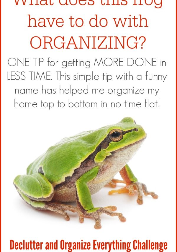 The BEST Organizing Tip (With the Weirdest Name)