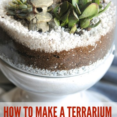 How to Make a Terrarium {in 3 Easy Steps!}