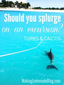 Turks and Caicos Snorkeling Catamaran Trip through Beaches Island Routes- looks incredible! Love the crystal clear blue water and DOLPHINS!