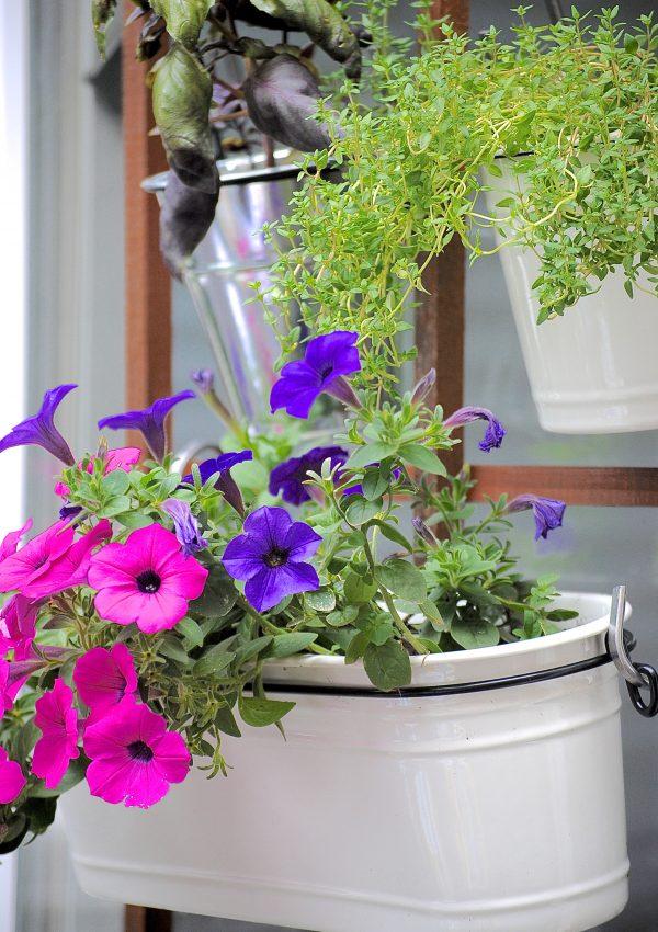 Vertical Herb Garden Update (The Deck Diaries, Part 2)