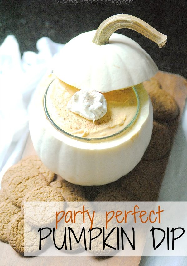Pumpkin Spice Dip Recipe {Perfect Fall Dessert!}