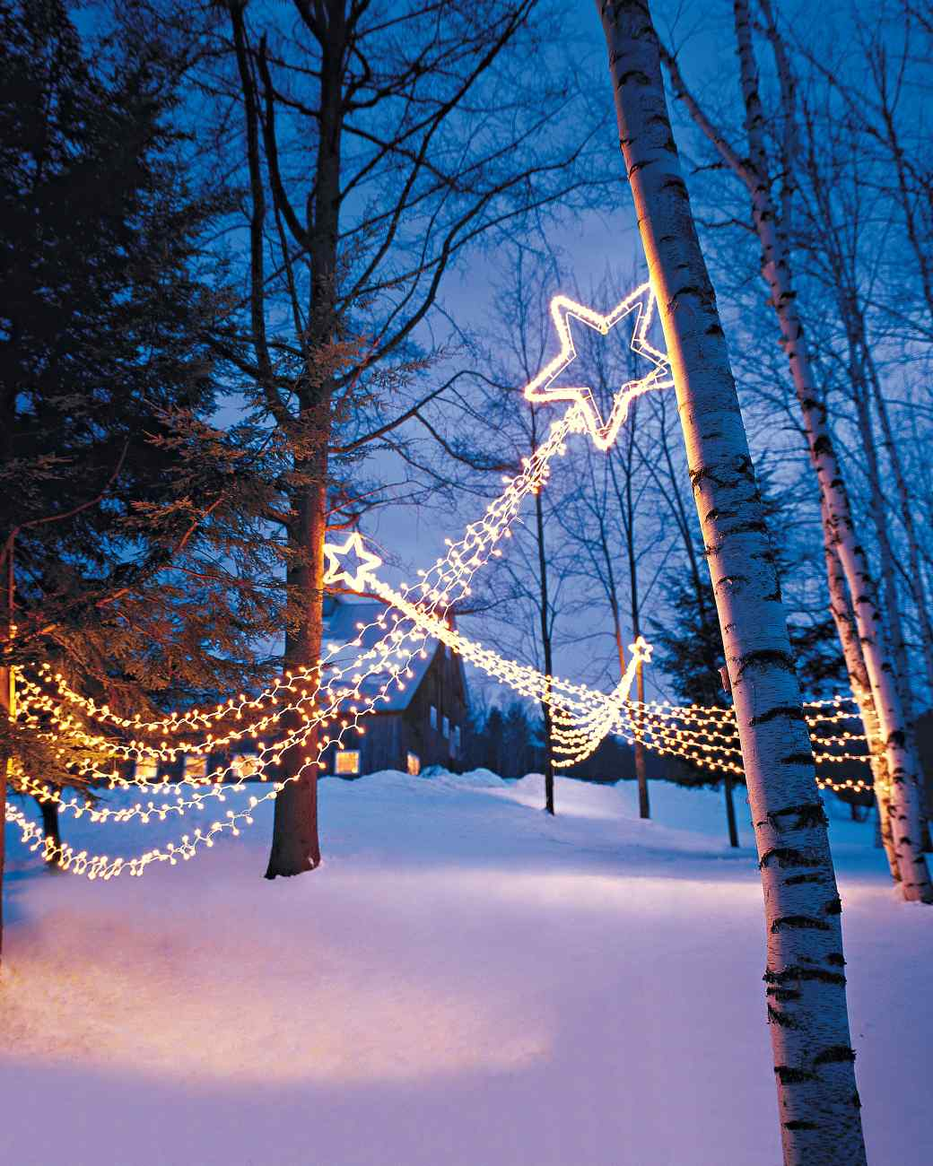 15 beautiful christmas outdoor lighting diy ideas making for Christmas lights and decorations
