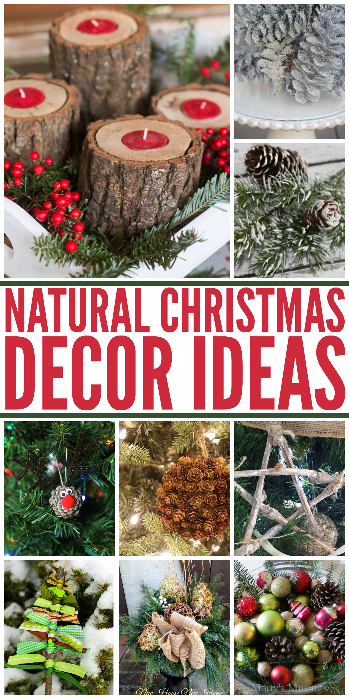 Wait, FREE Christmas decorations? Yes please! Love these ideas for FREE, natural