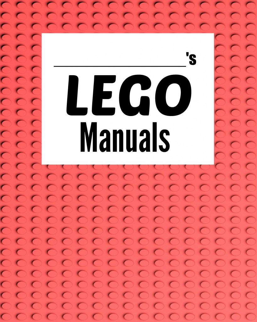 FINALLY a great way to organize LEGO manuals! Love this organization tip.