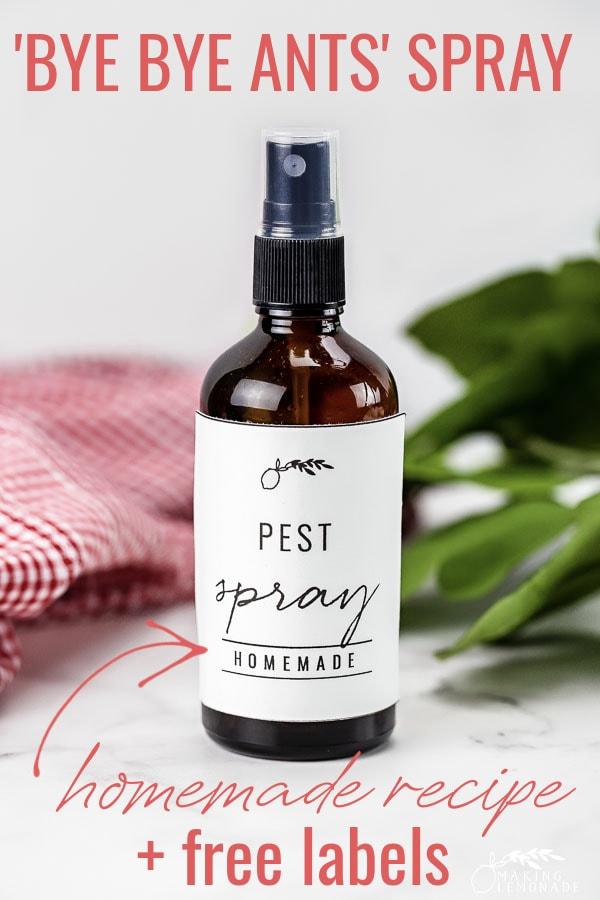homemade ant spray in bottle