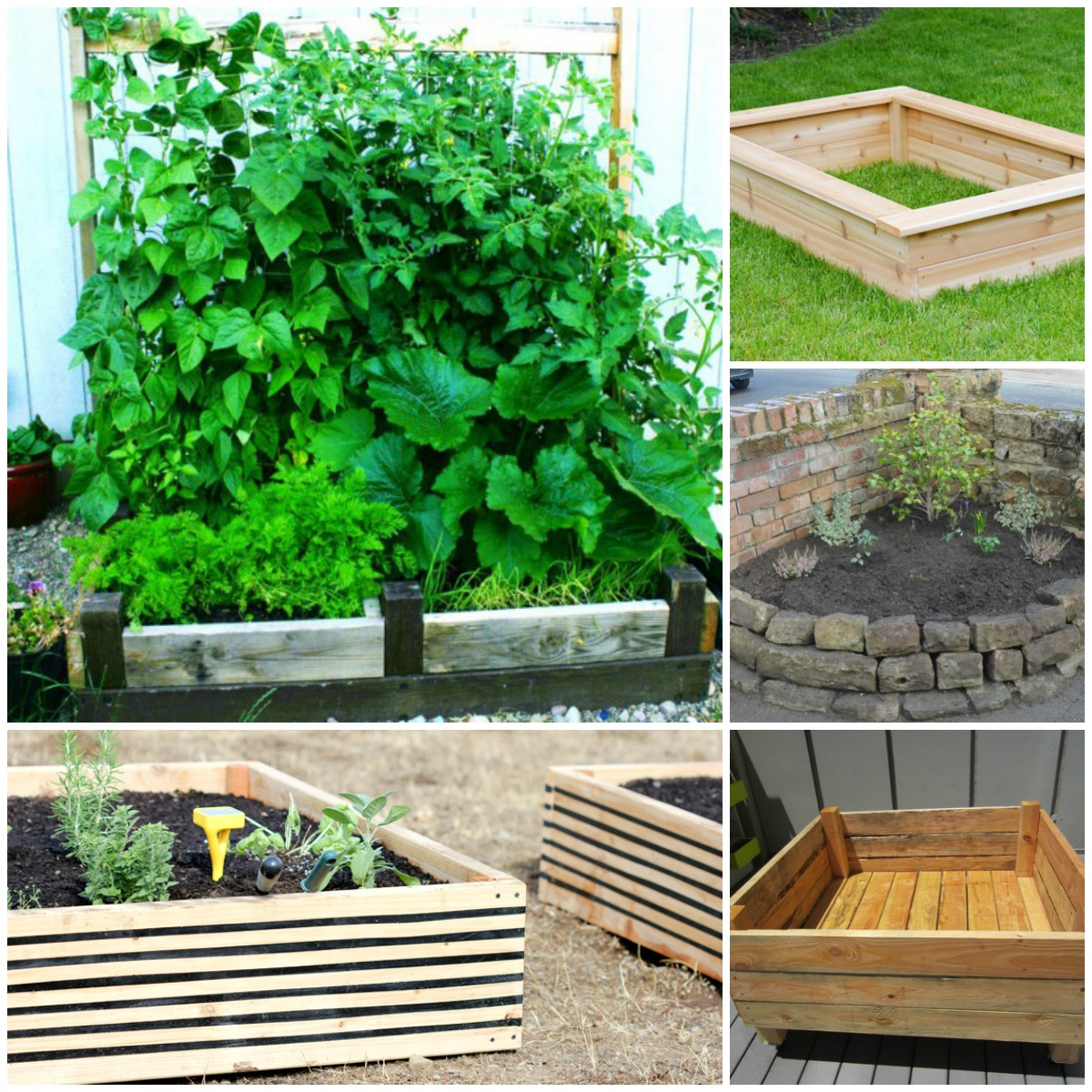 20 Brilliant Raised Garden Bed Ideas You Can Make In A ... on vegetable garden fence ideas, raised garden on hill, vegetable garden trellis ideas, raised garden fence design, raised garden with fountain, best vegetable container ideas, raised garden wall ideas, raised vegetable beds, small garden ideas, vegetables in flower garden ideas, raised vegetable gardens for beginners, landscape design ideas, raised container gardens ideas, flower bed design ideas, cute vegetable garden ideas, garden beds on sloped backyards ideas, landscape vegetable ideas, raised garden planter boxes ideas, raised veggie garden ideas, cool fall garden ideas,