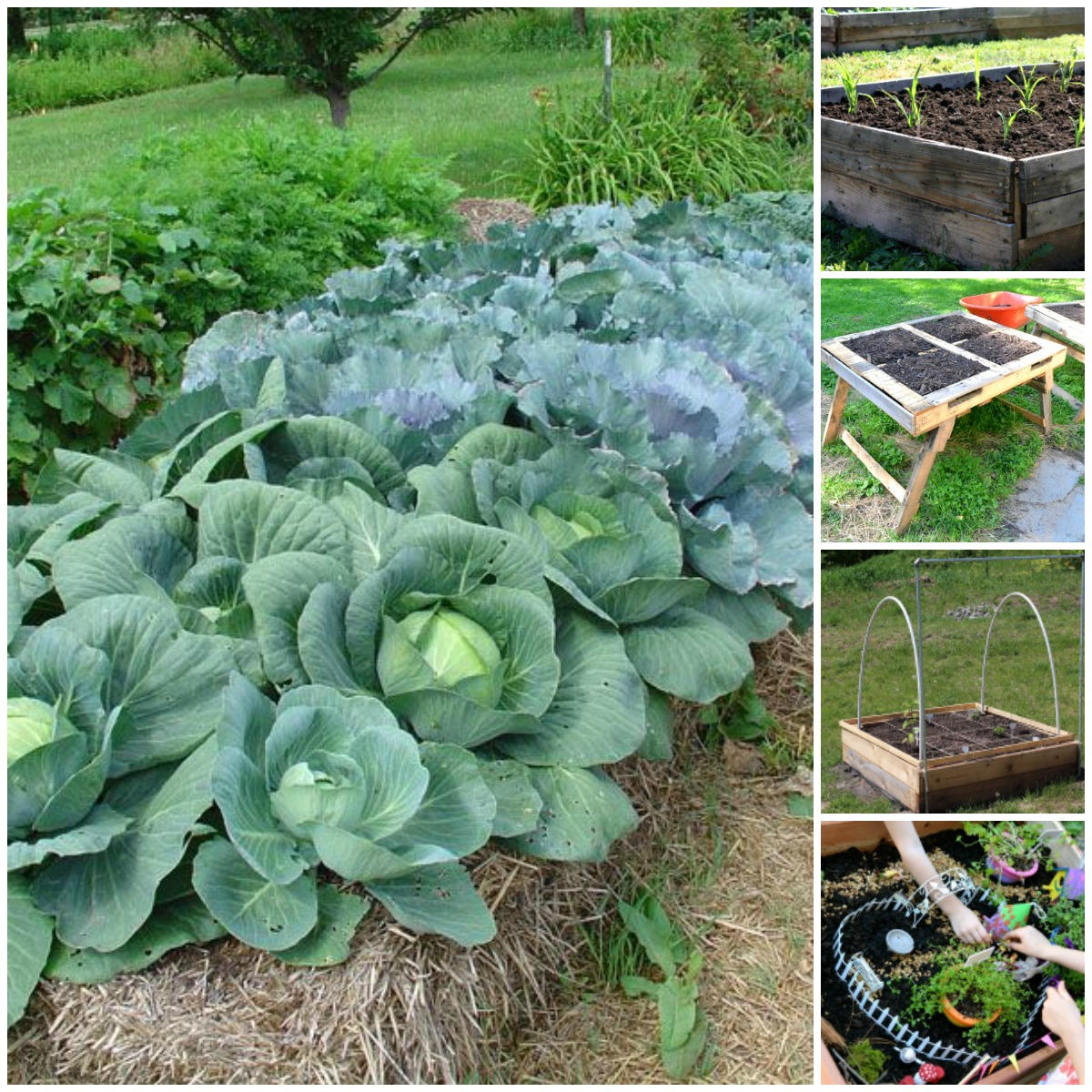Gardening Beds: 20 Brilliant Raised Garden Bed Ideas You Can Make In A