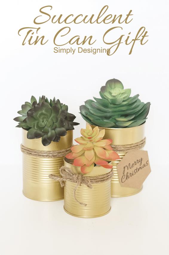 succulent tin cans