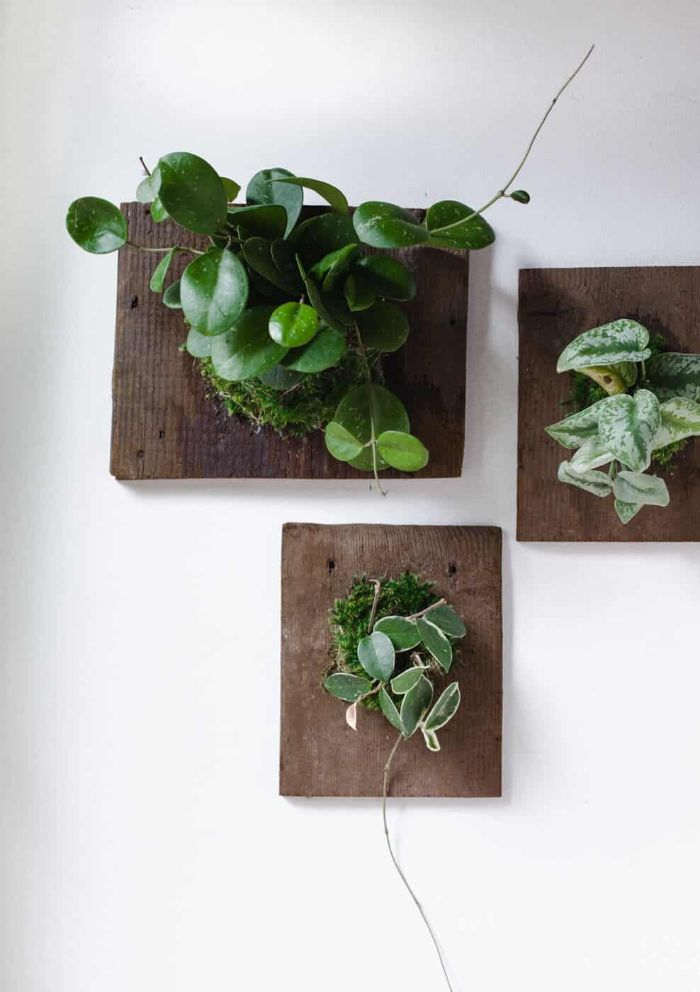 living art wall planters