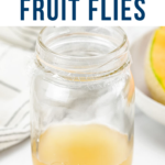 How to Get Rid of Fruit Flies (THE BEST Homemade Fruit Fly Trap)