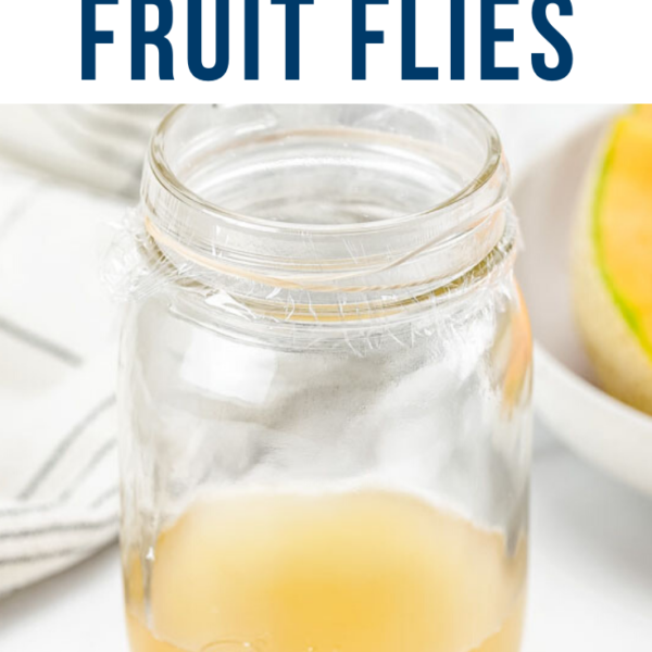 DIY fruit fly trap pin