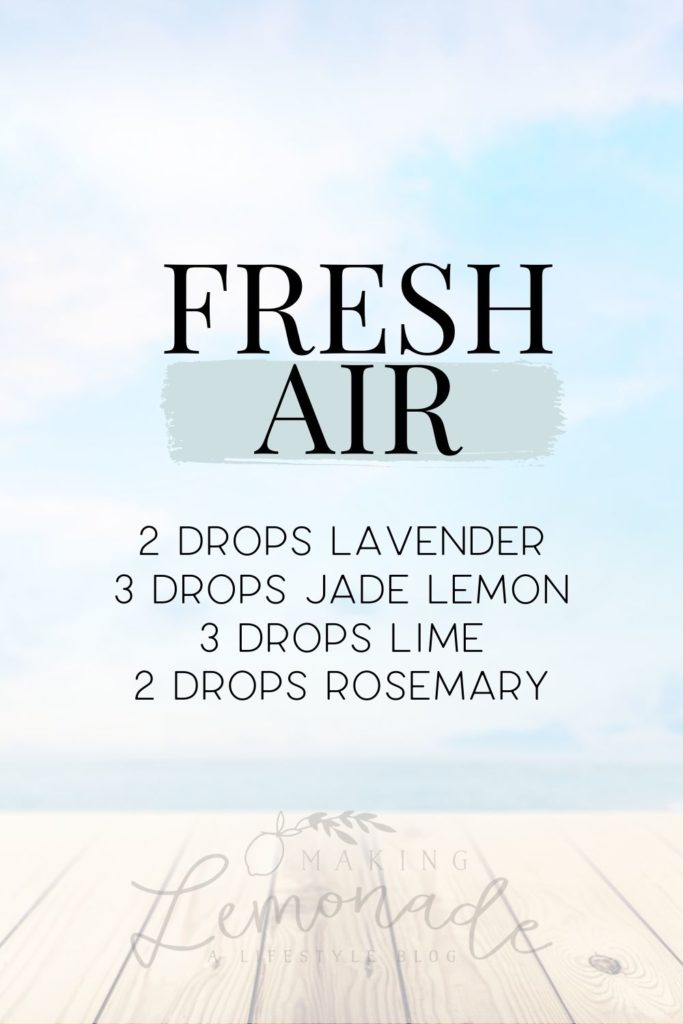 fresh air diffuser blend recipe