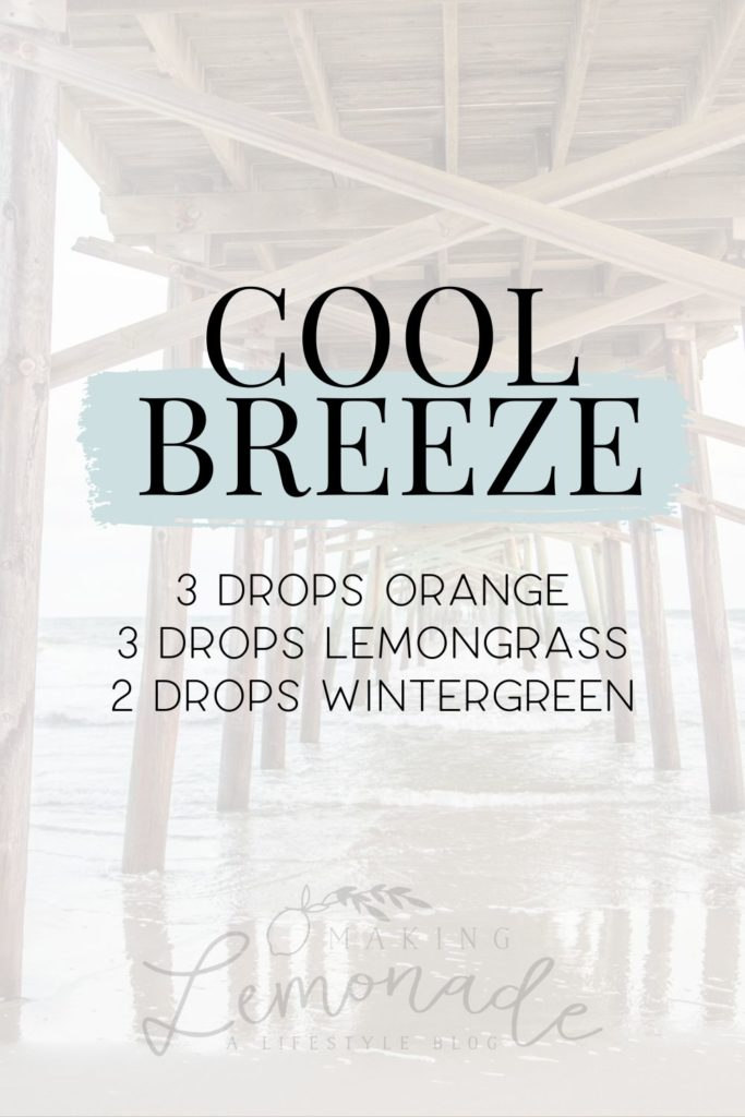 cool breeze diffuser blend recipe