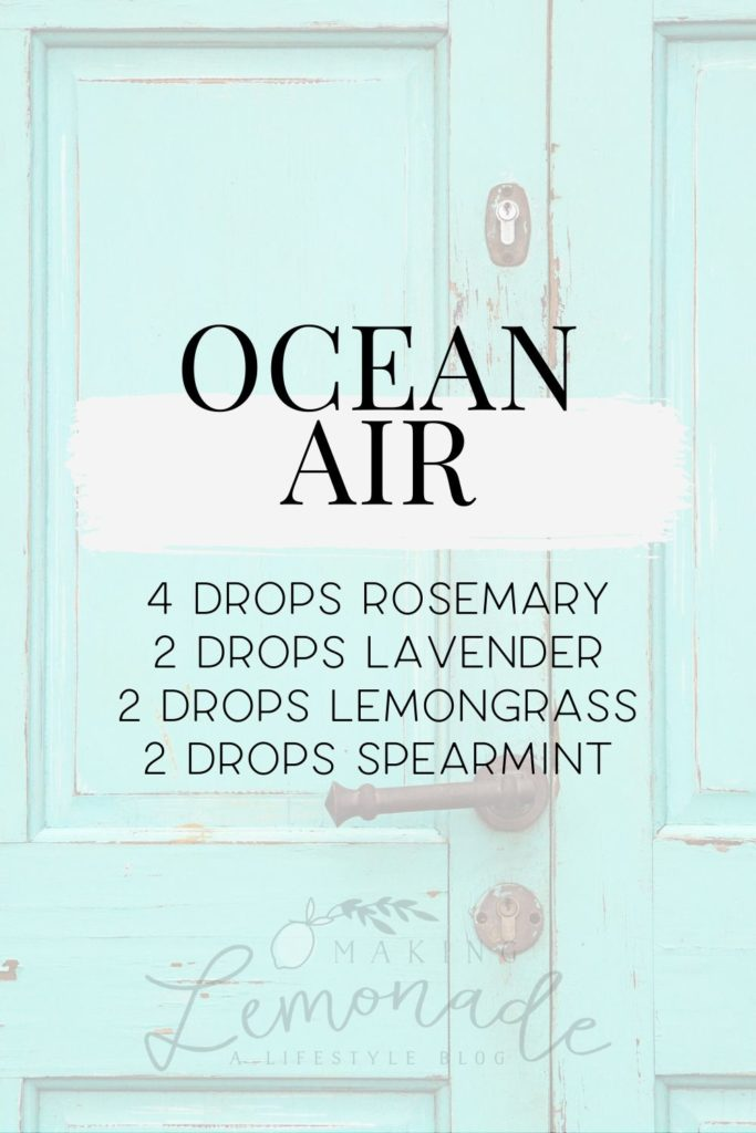 ocean air diffuser blend recipe
