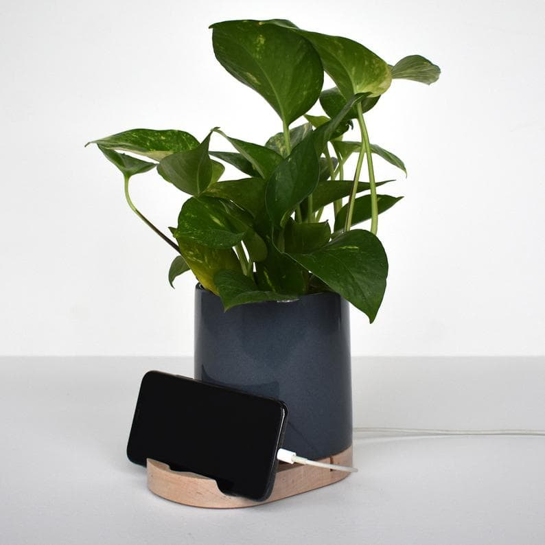 phone charge with planter