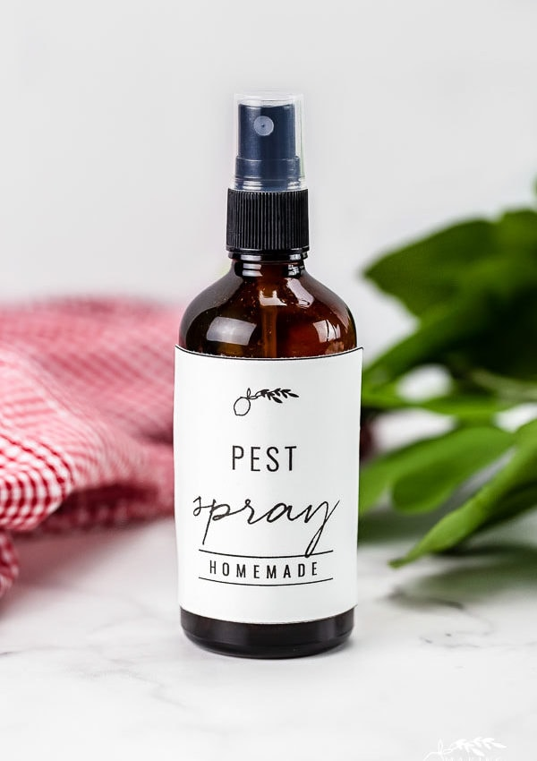 bottle of homemade pest spray