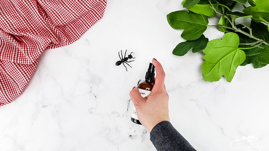 homemade ant repelling spray with ant