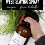 Homemade Vinegar Weed Killer Spray