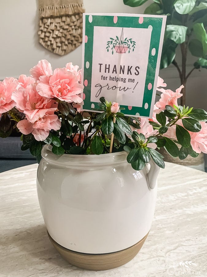 printable teacher appreciation gift tag with plant