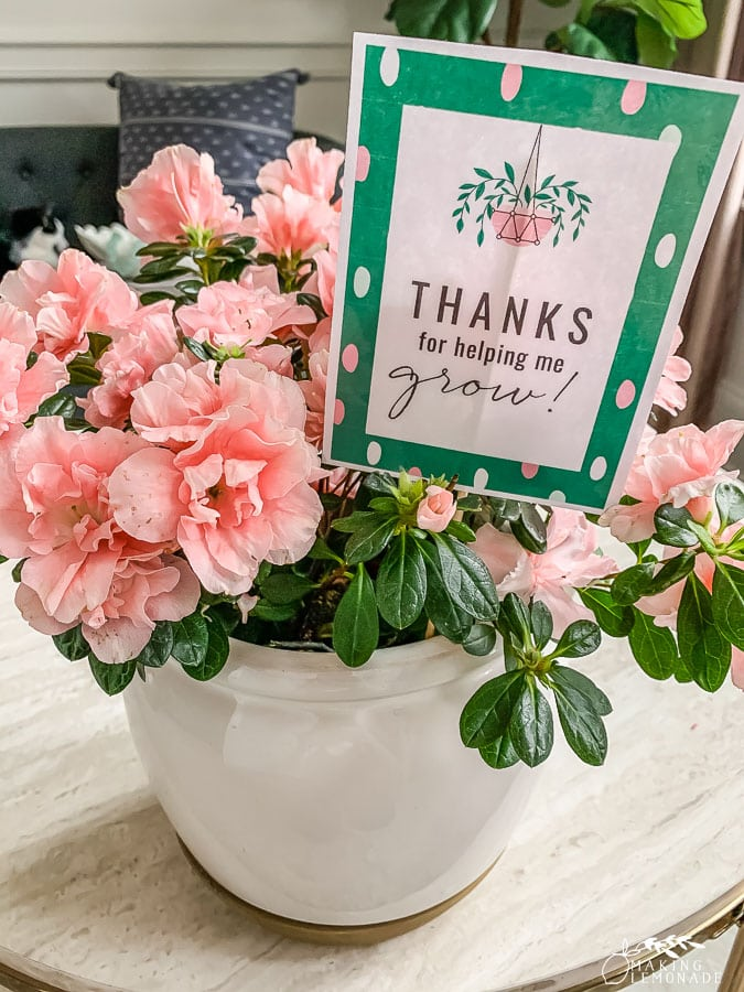 printable teacher appreciation gift tag in planter